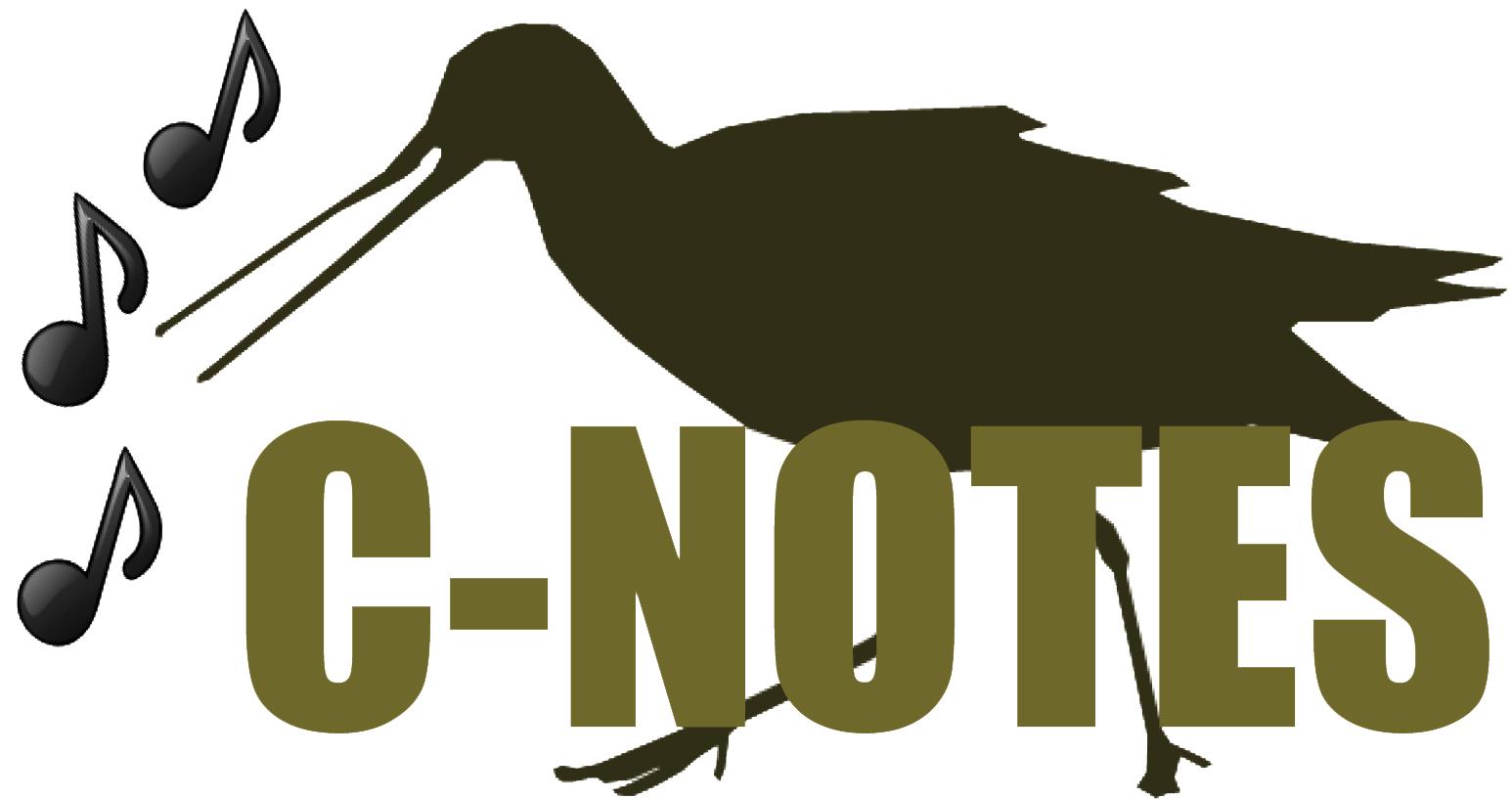 C-Notes #10 – Photoblogs