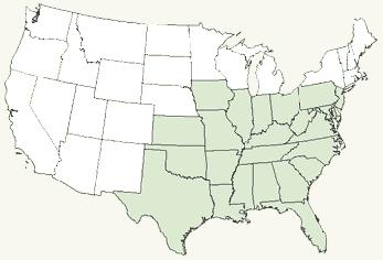 Rusty Blackbird Range Map