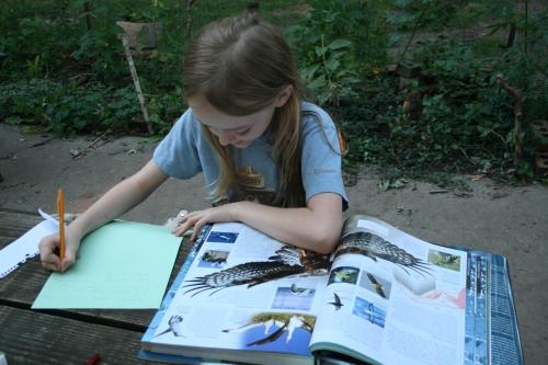 naturalist-s.JPG