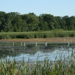 Wisconsin NWR Budget Issues