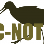 C-Notes #6 – Birdwire, Bird News Network, and Round Robin