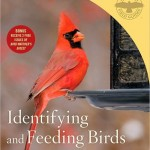Review of Identifying and Feeding Birds