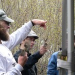 Biggest Week in American Birding – Banding Demonstrations