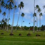 Phriday Photo – Coconut Coast, Kauai, Hawaii
