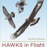 Review of Hawks in Flight, Second Edition