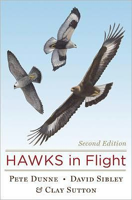 hawks-in-flight-2nd-edition