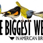 Biggest Week in American Birding Registration is Open!