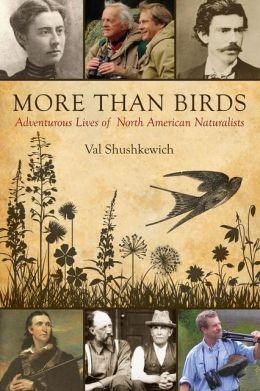 more_than_birds_cover