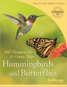 hummingbirds-butterflies