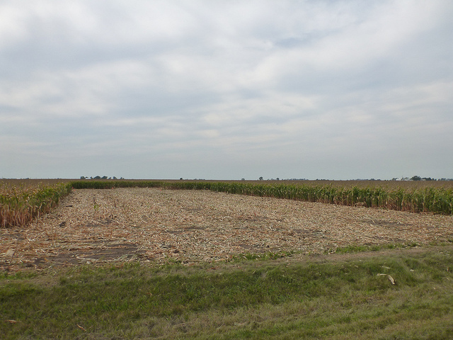 Callaway Farm - previously just a field of corn