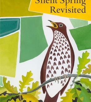 Silent Spring Revisited by Conor Mark Jameson
