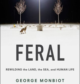 Feral Rewilding the Land the Sea and Human Life
