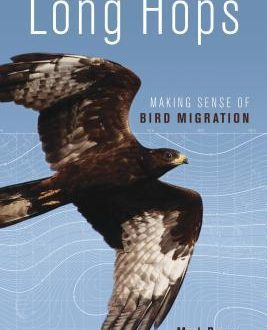 Long Hops Making Sense of Bird Migration