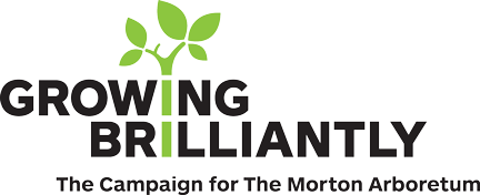 Growing Brilliantly Campaign Logo
