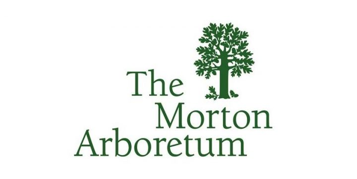 The Morton Arboretum – Living Museum of Trees and Much More