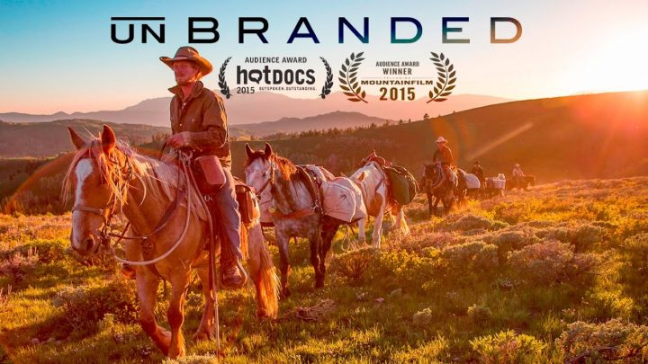 Unbranded Documentary About Wild Horses
